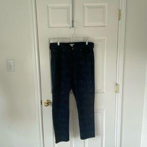 Eileen Fisher Dark Wash Jeans / Size 18